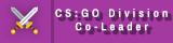 CS:GO Co-Divison Leader